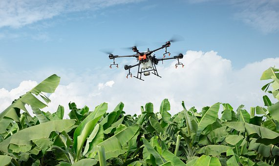 Centre allows use of drones to control locusts